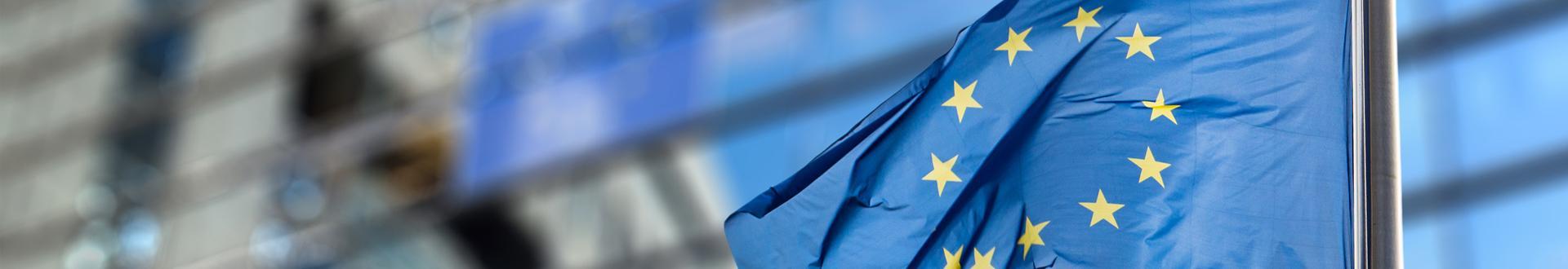 flaga uni